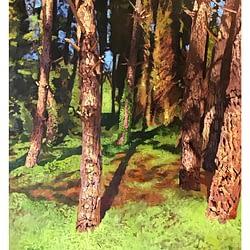 Pine Trees – Leszek Piotrowski